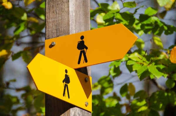 Two direction arrows on a sign post