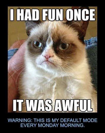 Grumpy Cat meme reflecting that he would have no fun on Mondays.